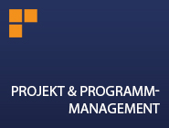Interim Management - Projektmanagement und Programmmanagement